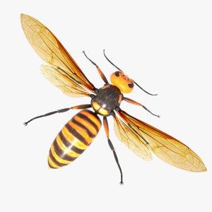 asian giant hornet model