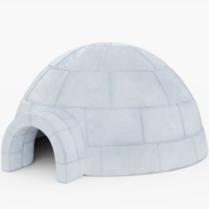 igloo architecture 3D