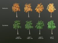 Aspen tree - low poly with lods