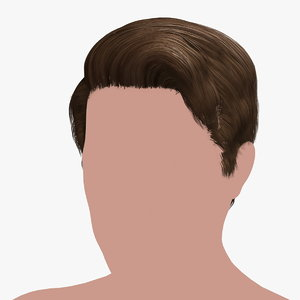 hairstyle 25 hair 3D model