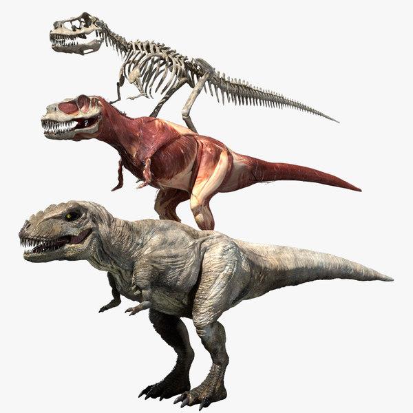 3D ceratosaurus v-ray rigged