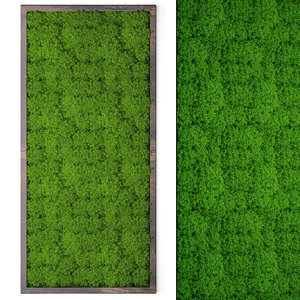 vertical stabilized moss 3D model