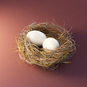 3D bird nest model