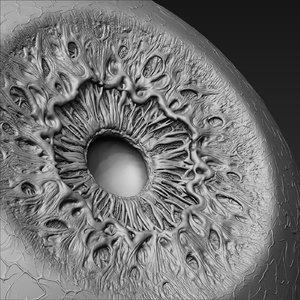 project eye pupil 3D