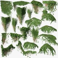 3D ivy p3 03 model