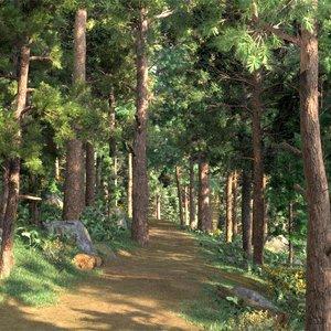 3D jungle biking hiking road model