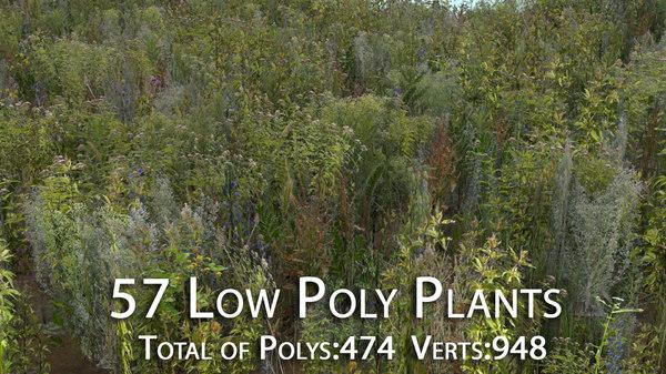 57 plants polys 3D model