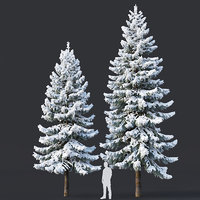 Spruce #6. Winter. Two sizes H8-10m. Modular branches