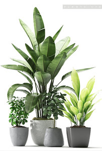 plant 176 3D model