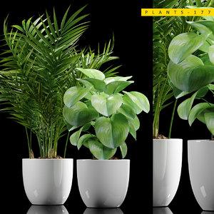 plant 177 3D model