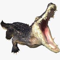 alligator animal 3D model