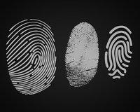 3D fingerprint print finger model