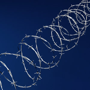 3D model barbwire barb