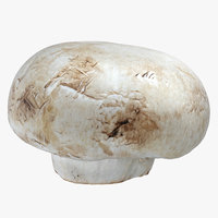 white button mushroom 03 3D model