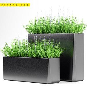 3D plant 180 planter model