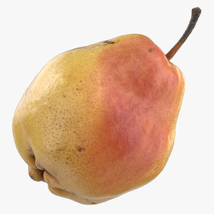 3D model comice pear 01