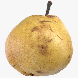 comice pear 03 3D model