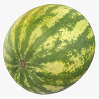 3D model water melon 01