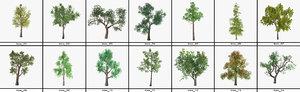 tree package 14 model