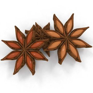 anise aniseed spice 3D model