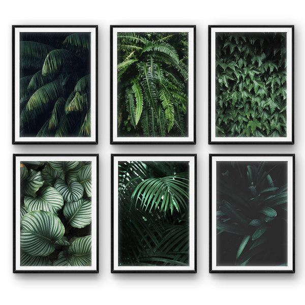 3D model tropical leaves set 2