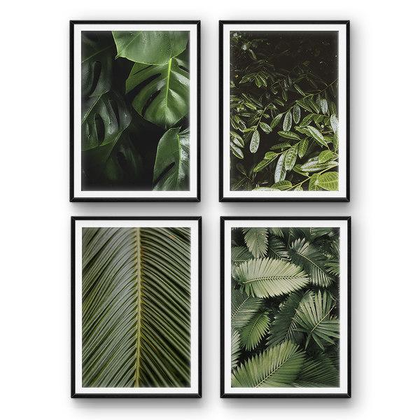 tropical leaves 3D model