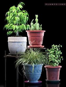 3D plant 182