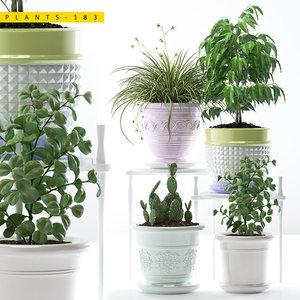 3D plant 183 model