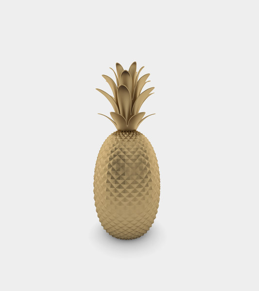 3D pineapple statue modelled