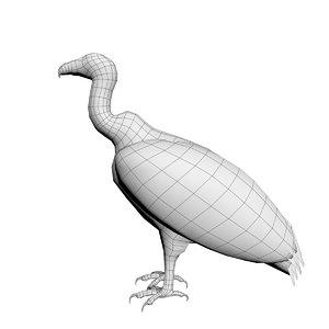 vulture base model