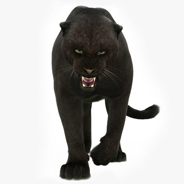 3D black panther rigged fur