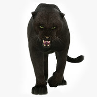 3D black panther rigged fur