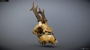 deer roe skull 3D