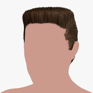 hairstyle 27 hair 3D model