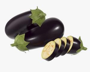eggplant plant 3D