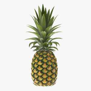 pineapple fruit food 3D model