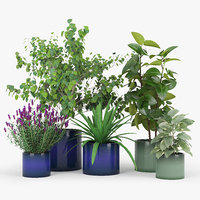 blue ceramic planters green 3D