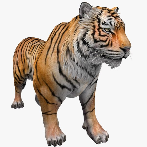 tiger animal 3D model