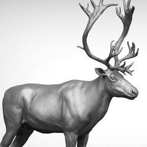 3D reindeer zbrush model