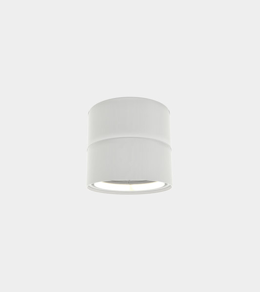 adjustable ceiling spot light 3D