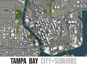 city tampa area surroundings 3D