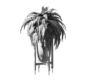 fern pots 4 plant 3D model