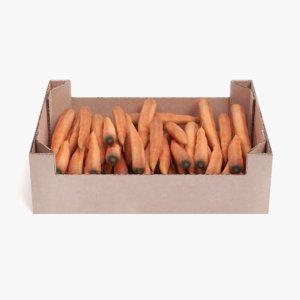 3D carrots box model