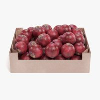 3D model onions box