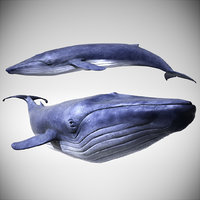 Blue Whale with Octane Support