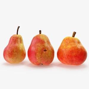 3D pears red 01-03 hi