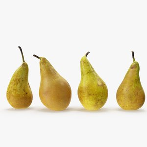 3D pears conference 03-06