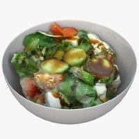 bowl salad model