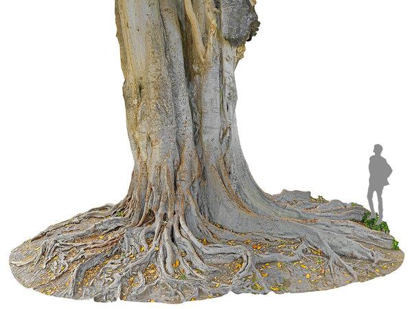 giant tree jungle 3D model