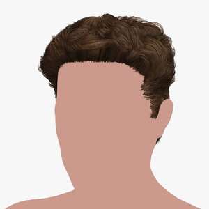 3D hairstyle 28 hair model